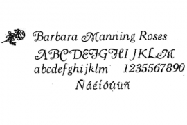 18pt. Goudy Cursive (Spanish Accents Available)
