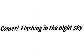 24pt. Flash